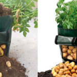 Chollo Bolsa para plantar patatas en casa de 50 litros de volumen