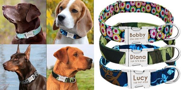 Collares para perros personalizados chollo en AliExpress