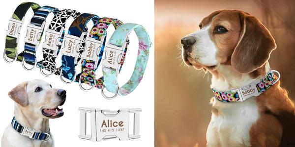 Collares para perros personalizados baratos en AliExpress