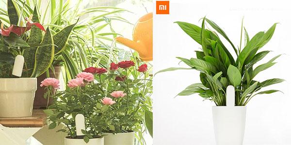 Xiaomi Mi Plant Flower Tester rebajado